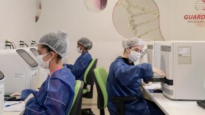 Grupo Pardini finaliza implantação do maior núcleo de produção de testes para Covid-19 do Brasil