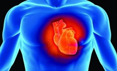 Fim dos transplantes? Células da pele são usadas para criar tecido cardíaco